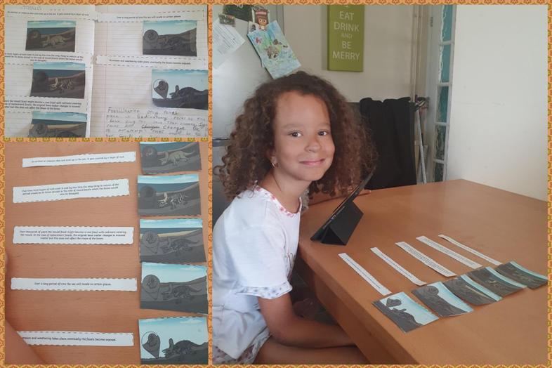 Jasmine's great fossilisation process work