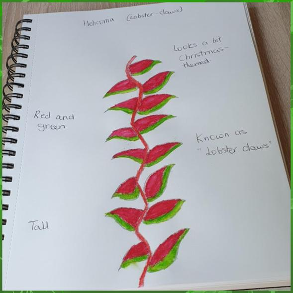 Rainforest plant art from Shriya