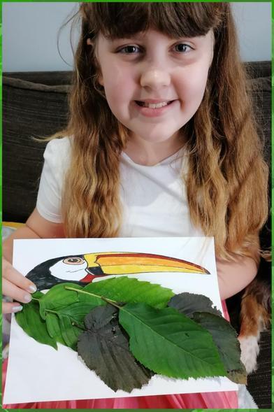Emily's excellent toucan