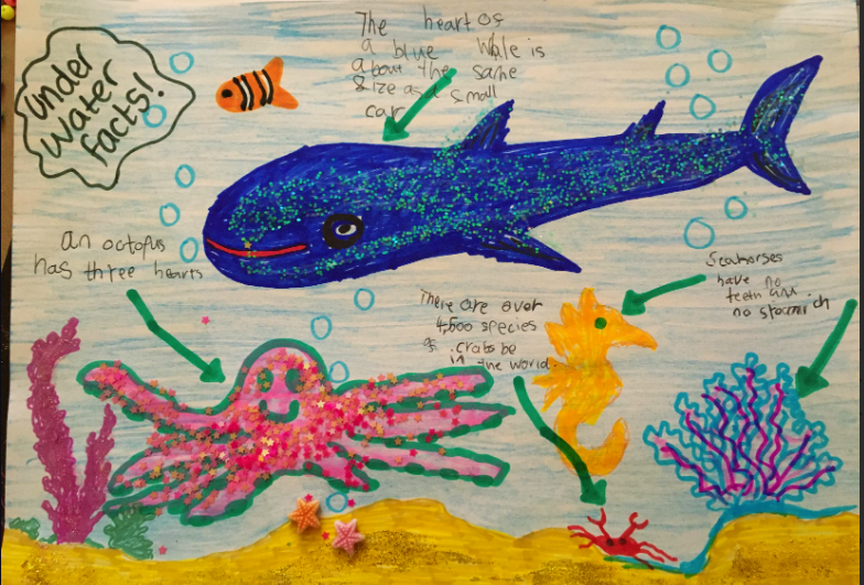 """Rosie's beautiful """"Under The Sea"""" poster."""