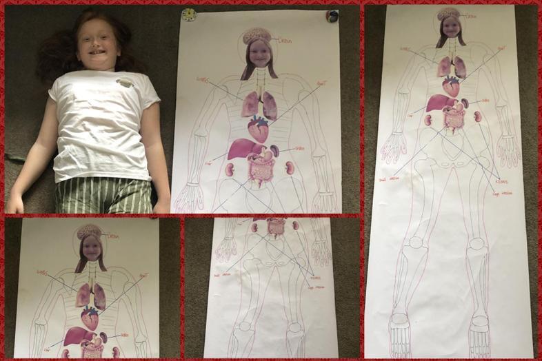 Ella with a life size human body diagram