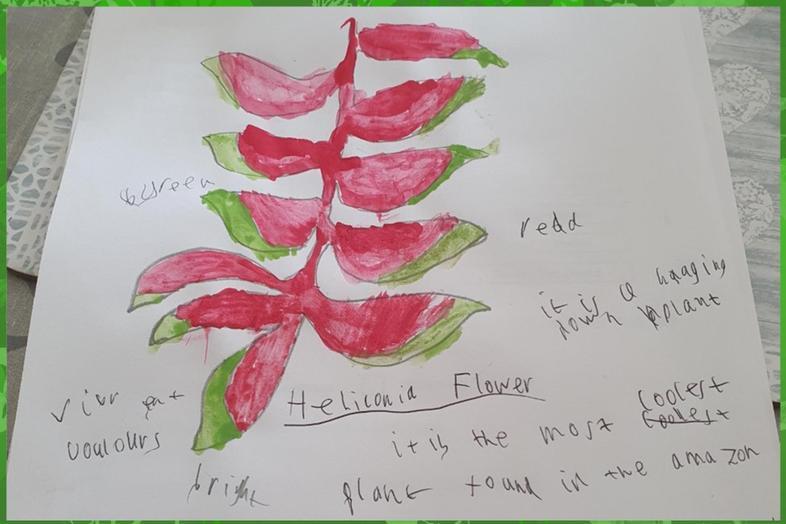 Rainforest plant art by Leo