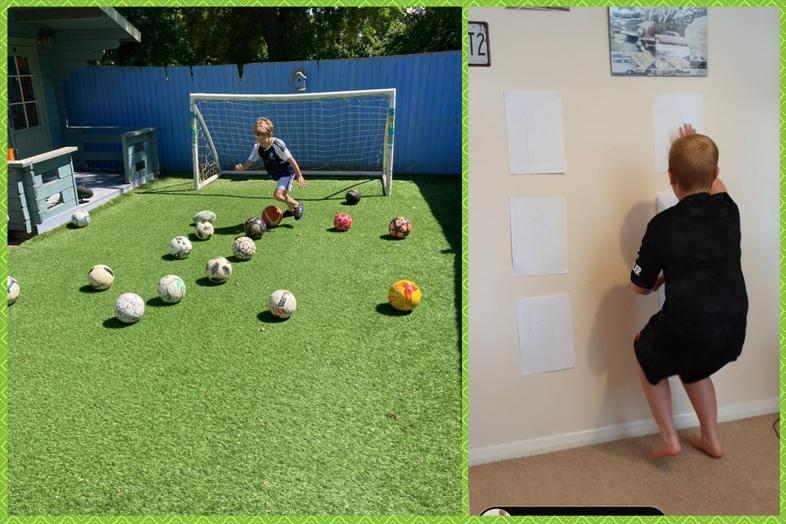 Alfie in Agility and Josh at the reaction wall