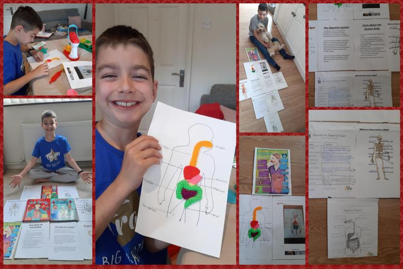Fraser's excellent work on the human body