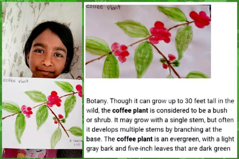 Rainforest plant art by Sabs