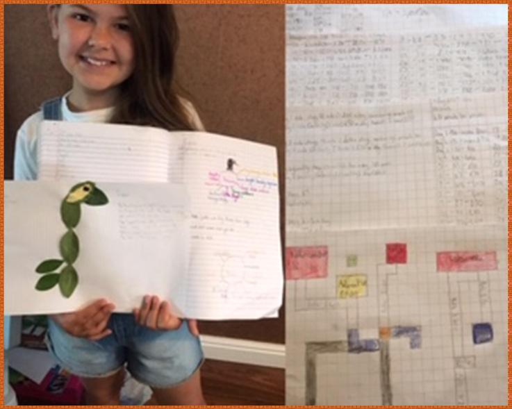 Greay leaf art and theme park maths from Smiler!
