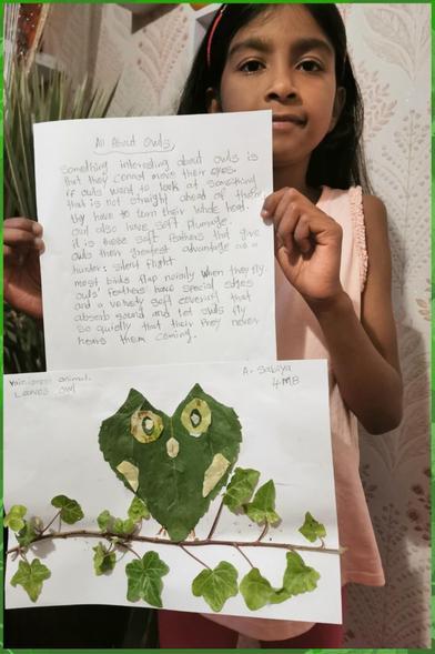 Sabs leaf-based owl