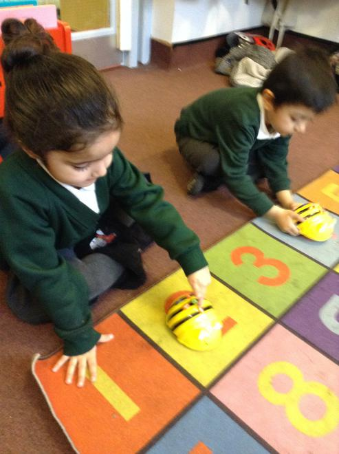 We learnt how to programme the Beebots.