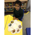 We looked carefully when sorting the people.