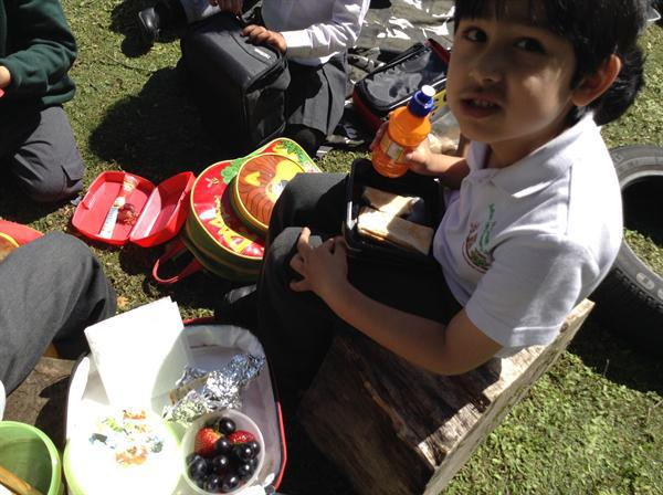 We enjoyed eating healthy packed lunches.