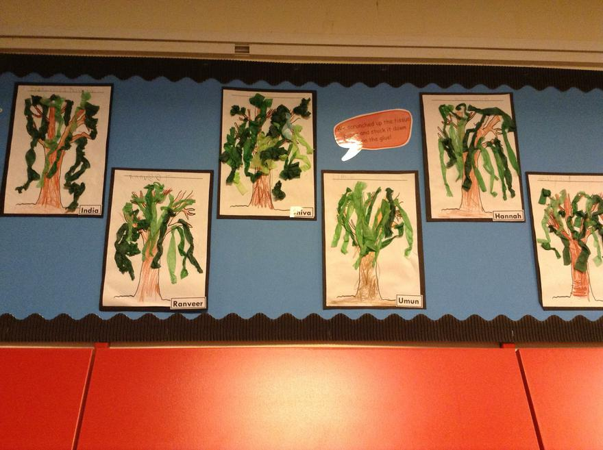 Reception - Willow Class display.