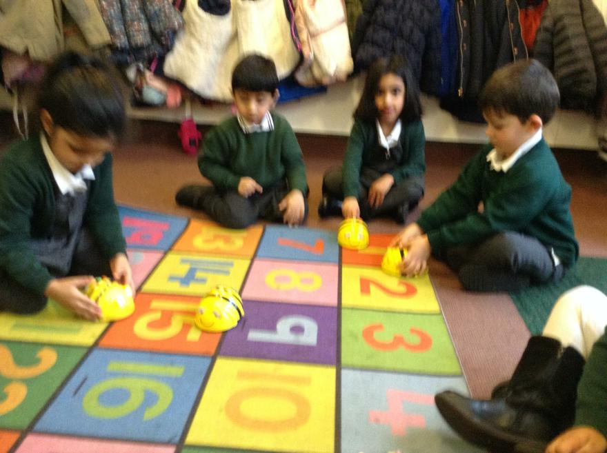 The Beebots went forwards and backwards!
