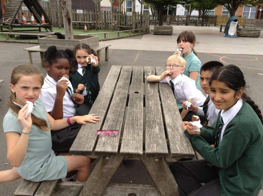 We all enjoy are choc ices.