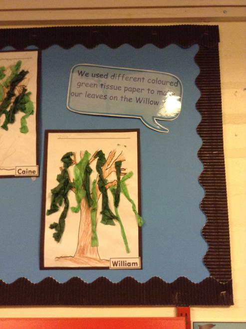 A Willow tree collage.