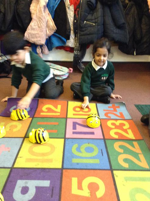 We made the Beebots go in different directions.