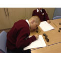 Using objects from the allotment to help in maths