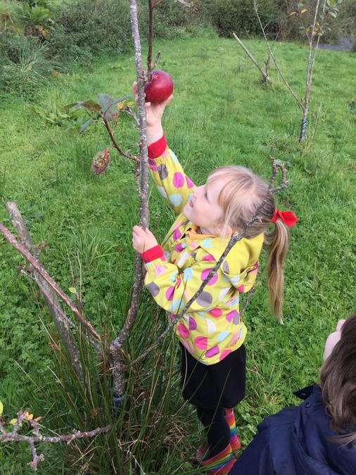 UTW Festivals - It's Harvest Time