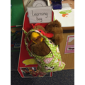 Our Learning Bag