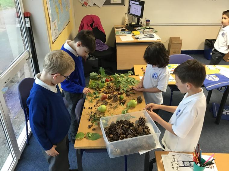 Sorting our autumn finds
