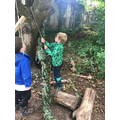 Making a pully system with ropes and logs!
