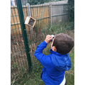 Checking out the Bee Homes