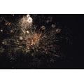 Firework Extravaganza 2015