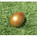 shaky egg