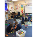 Y1 Carpet Area