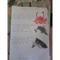 Owen's Commotion in the Ocean worksheet