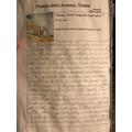 Leo's newspaper report