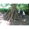 Den building after lunch was...