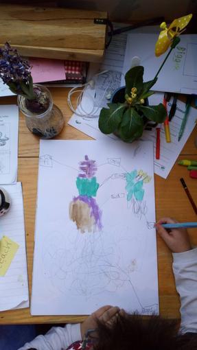 Kubo's plant