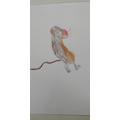 Elliott's mouse