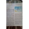 Owen's news report