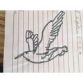 Leo's seagull