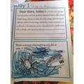 Leo's diary
