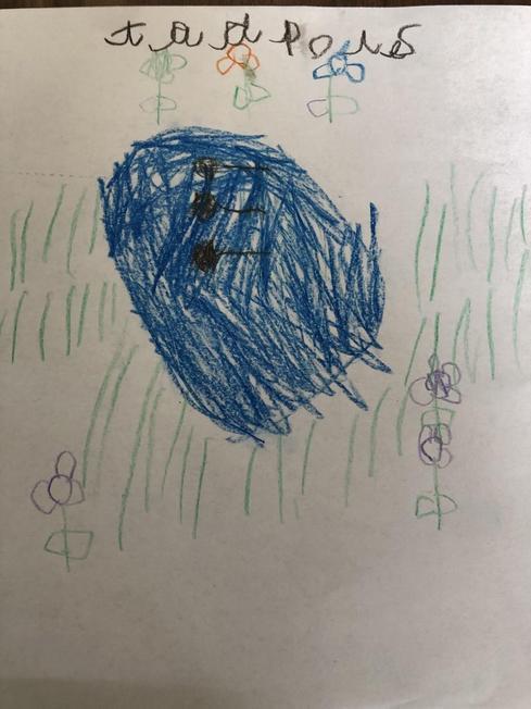 Harper's picture of tadpoles.