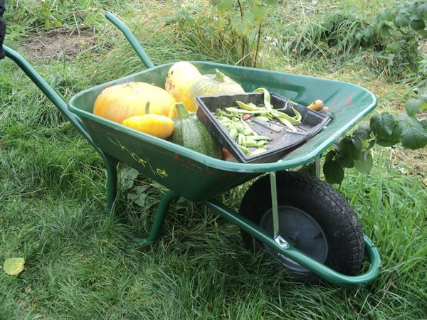 Thank you Y6 leavers for our super new wheelbarrow