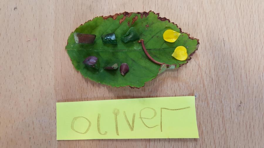 Oliver's bug.