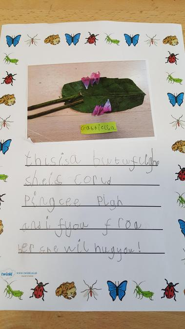 Gabriella's butterfly and description.