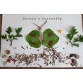 Sachin's Butterfly