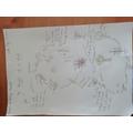 Karthikeya - Life cycle of a plant