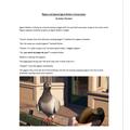 Asher - Pigeon Conversation