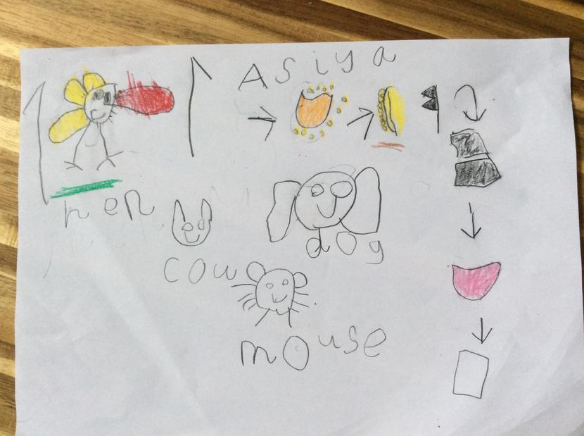 Asiya's story map.