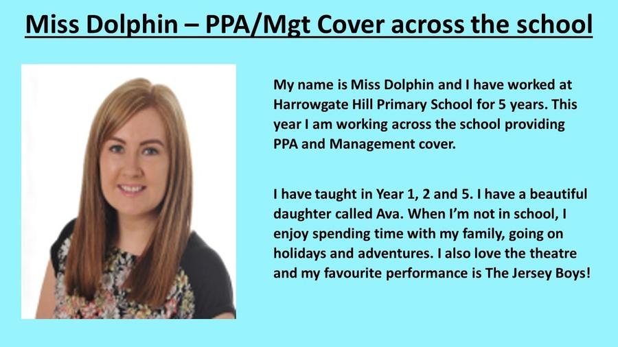 Miss Dolphin