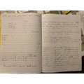 Hayden's story plan