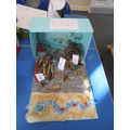 Here is the winning entry for Sapphire Class inspired by Stig of the Dump