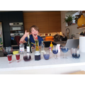 Red cabbage water investigation