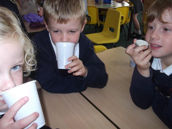 Using our senses in the senses carousel