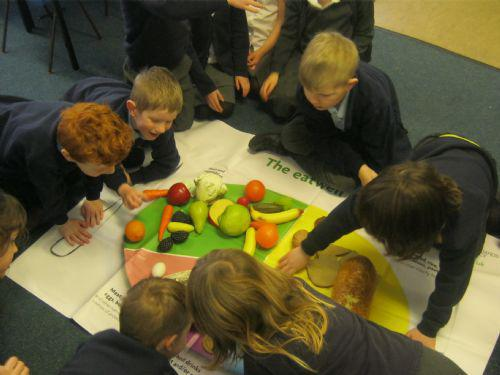 """Finlay - """"Carrots go in the fruit and vegetables"""""""